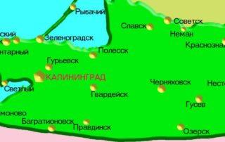 контроль веса фур в Калининграде