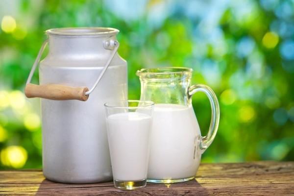 поставки молока в Китай